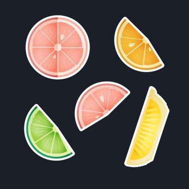 Fruit Sticker Pack. Modern Flat Vector Concept Illustrations. Grapefruit, Orange, Lime, Lemon Slices. Social Media Ads. icon