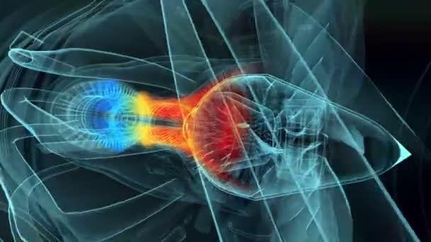 Jet motor 3d rentgenové modrá transparentní izolovaných na černém pozadí