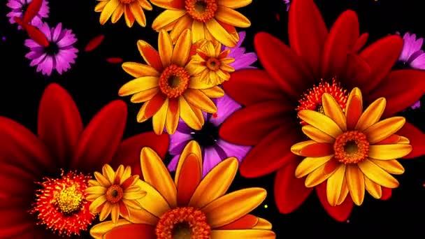 Rostou barevných květin
