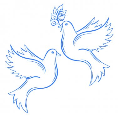Vector Doves. Hand drawn Dove of Peace illustration and dove wit