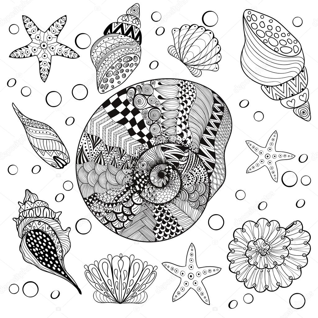 Vector set Sea Shells, zentangle shelsl for adult anti stress Co