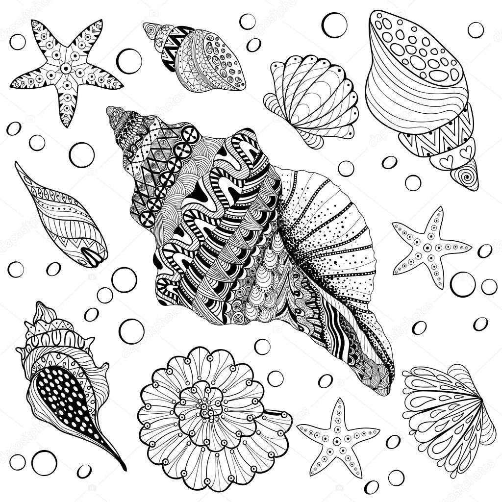 Vector set Shells, zentangle seeshell for adult anti stress Colo
