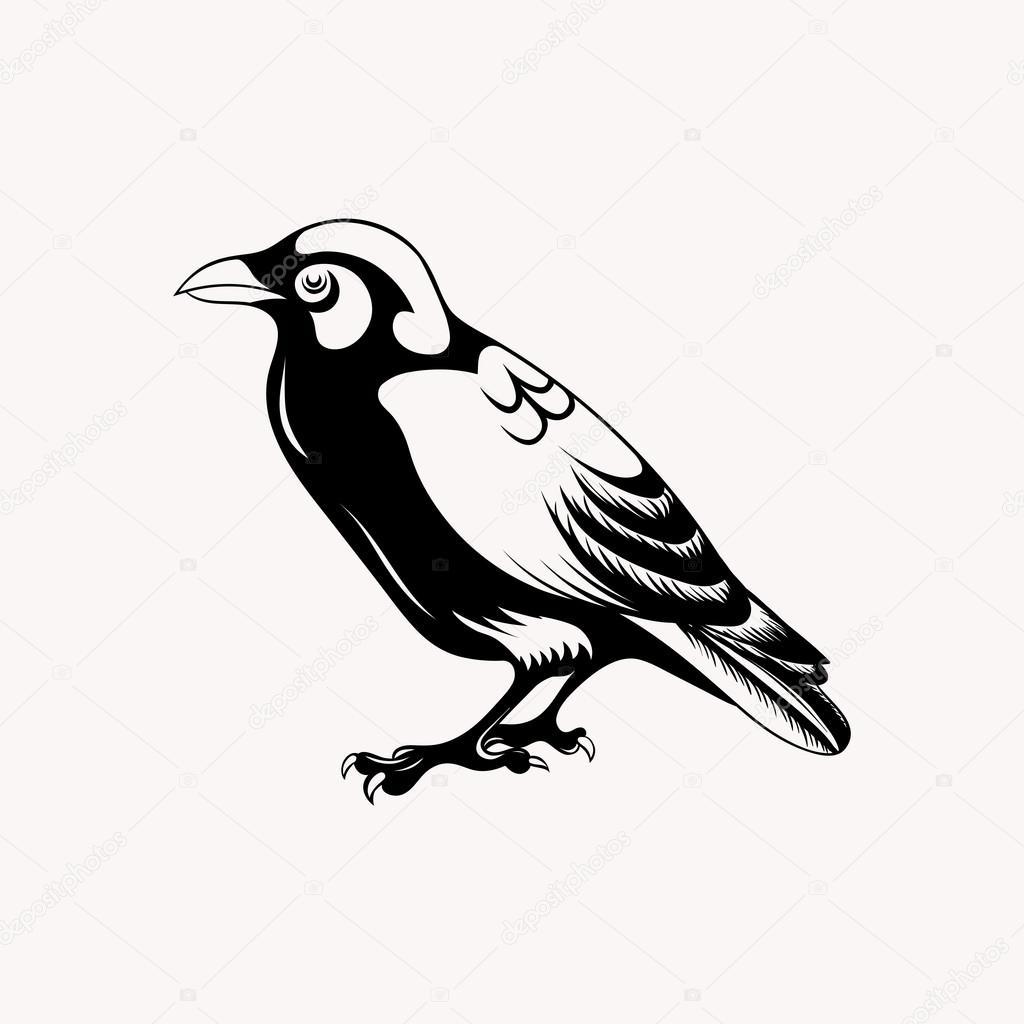 Pájaro negro Cuervo — Archivo Imágenes Vectoriales © i_panki #64059681