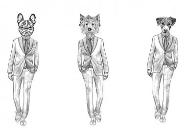 Sketch French Bulldog, Jack Russel Terrier and White Terrier