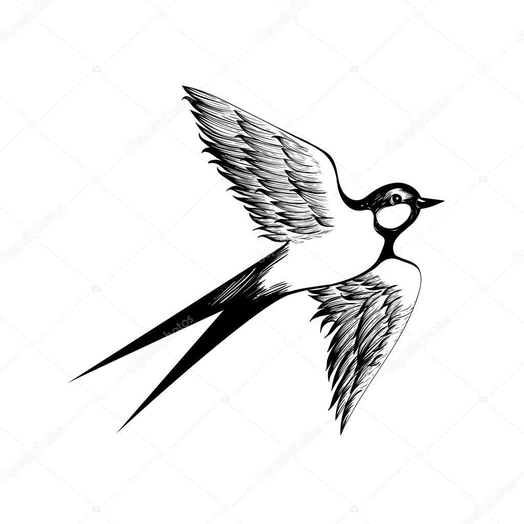 Set of sketches of flying swallows stock vector illustration - Hand Drawn Flying Swallow Silhouette Stock Illustration