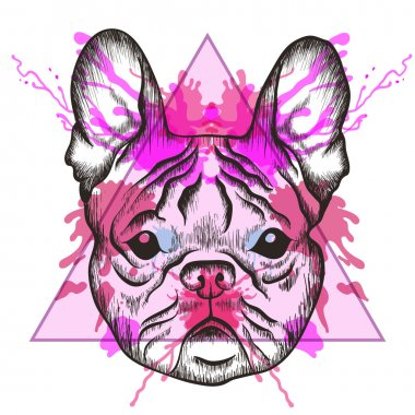 Sketch Hipster French bulldog face in triangle frame with waterc