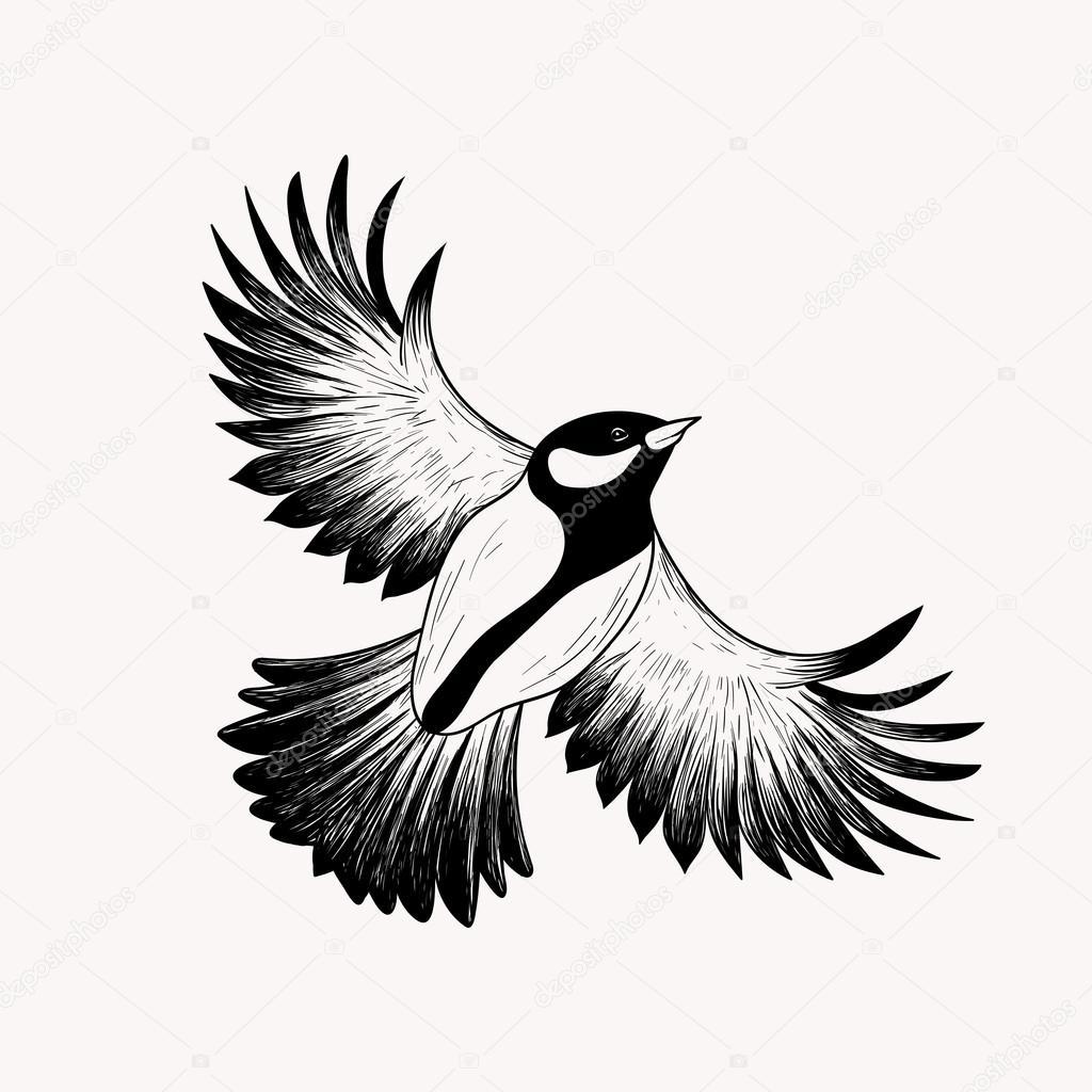 Dessin oiseau en vol illustration de vecteur dessin s - Dessin oiseau en vol ...