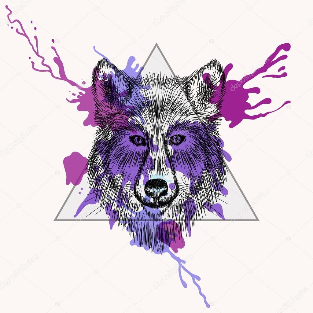 Caída de cara de lobo en el marco del triángulo con tinta acuarela ...