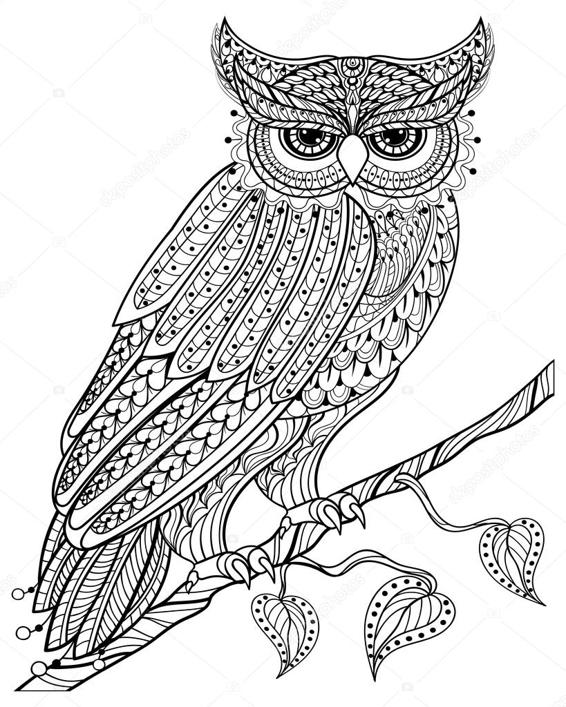 Hand drawn magic Owl sitting on branch for adult anti stress Col