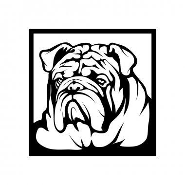 Bulldog logo illustration