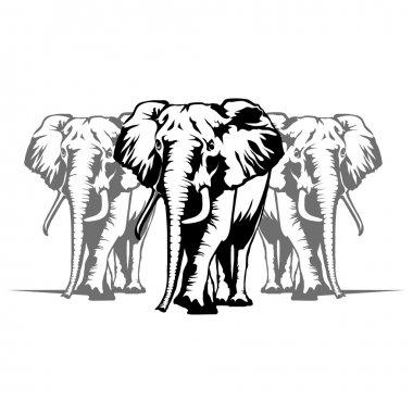 elephant logo illustration