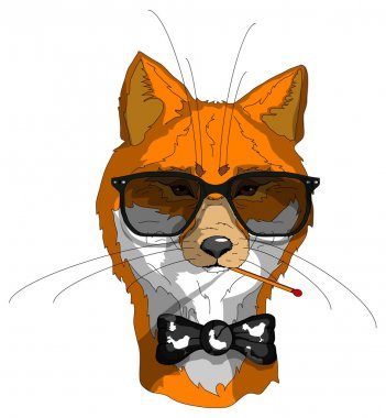 Hipster fox In glasses