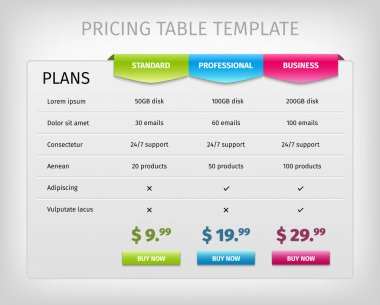 Colorful web pricing table template for business plan.