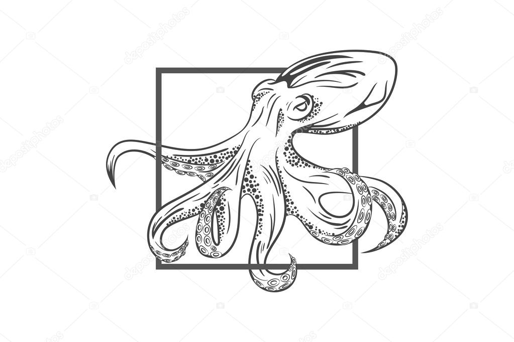 Octopus emblem Template — Stock Vector © dizinf #75667261