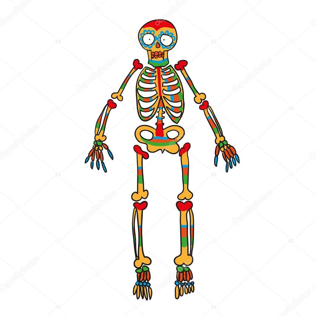 skeleton color vector doodle
