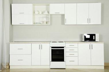 The new white kitchen interior