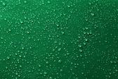 Fotografie kapky vody na zelené