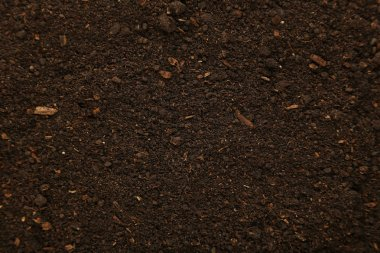 Soil organic background