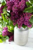 fiori lilla viola in latta di innaffiatura