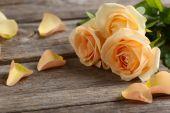 Fotografie Kytice oranžové růže