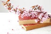 Na jaře kvetoucí větev s knihami