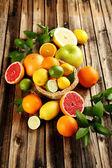Fotografie čerstvé citrusové plody