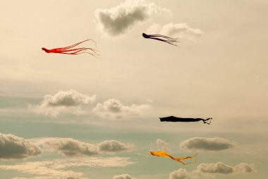 Kites flying in the cloudy sky