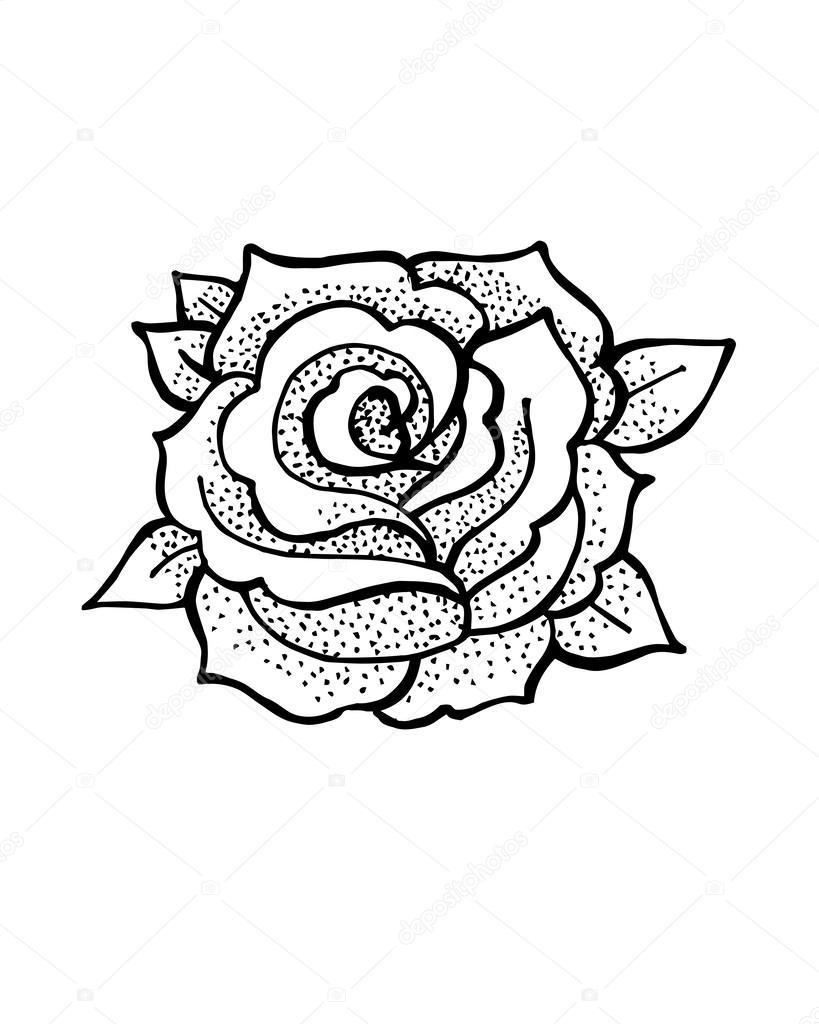 Vintage hand drawn rose Stock Vector bernardojbp 62896813