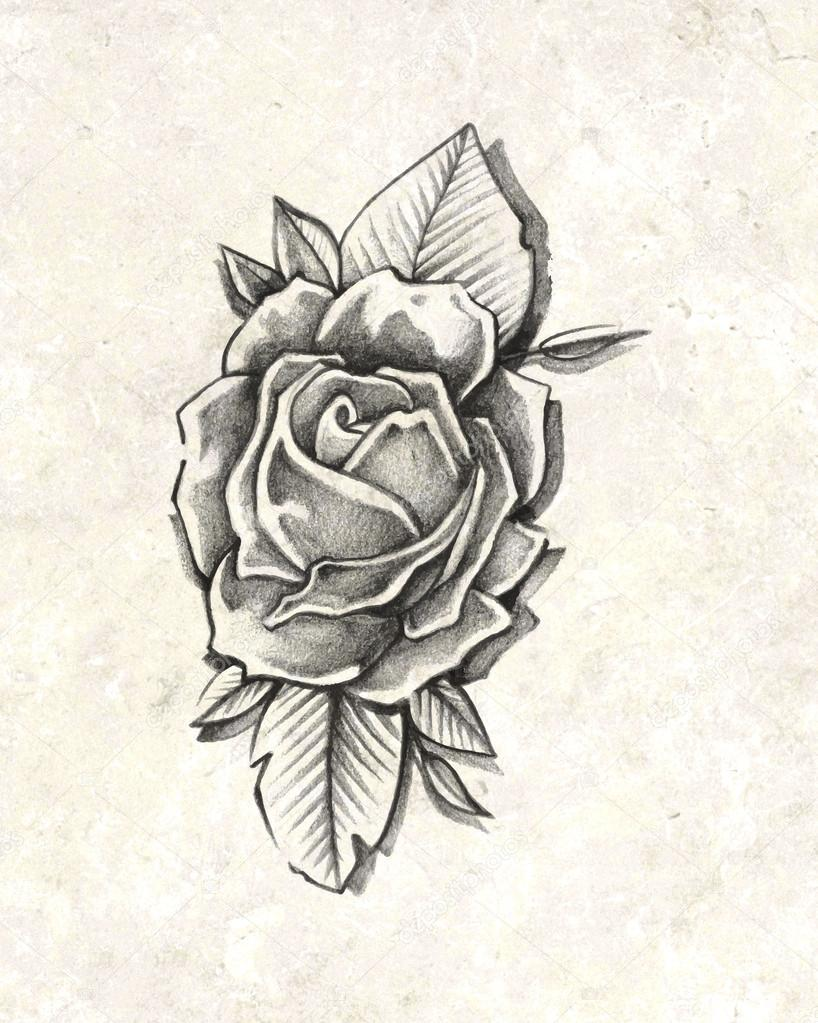 Imágenes Dibujo A Lapiz Rosas Dibujo A Lápiz De Rosa Foto De