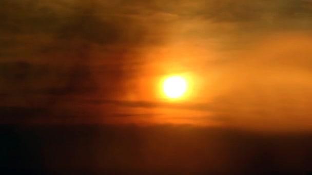 Mlha atmosféru siluety ptáků na slunci