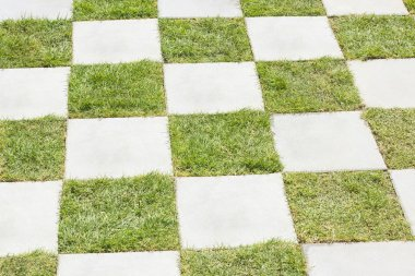 Grass between stones, block paving