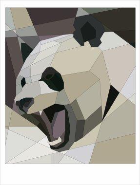 Panda growls
