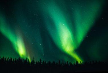 Northern lights couple