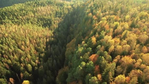 Podzimní barevný horský les, letecký pohled