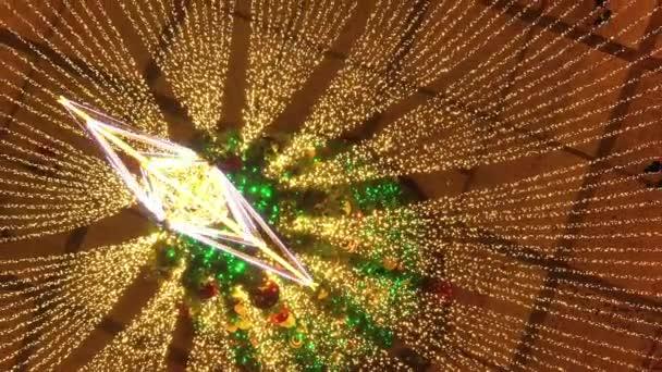 Illuminated Christmas tree on Sofia Square in Kyiv.