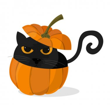 Halloween pumpkin with a black cat icon