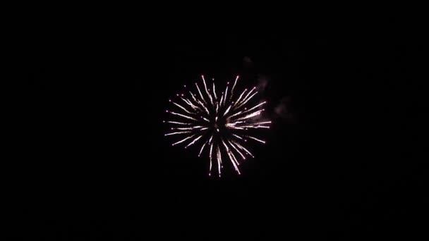 Multico odkrýval ohňostroj na noční obloze. Zářící ohňostroj s bokeh světly na noční obloze. Zářící ohňostroj. Novoroční oslava ohňostroje. Krásné barevné noční exploze na černé obloze