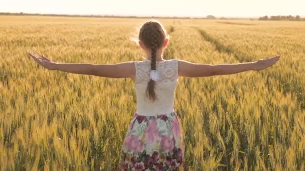 Kostenlose unbeschwerte Mädchen genießen die Natur und das Sonnenlicht in einem Weizenfeld. glückliche Kindheit und Familienkonzept. gesundes Kind rennt und dreht sich in Zeitlupe über Feld und berührt Ähren mit der Hand.