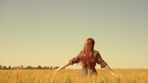 Glückliches junges Mädchen läuft in Zeitlupe über das Feld und berührt mit ihrer Hand Ähren. Schöne freie Frau genießt die Natur in warmem Sonnenschein in einem Weizenfeld vor Sonnenuntergang. Mädchen reist.