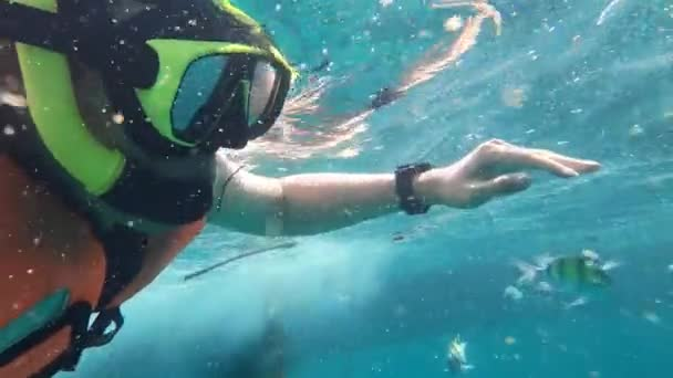 Mann schnorchelt mit Fisch im Ozean