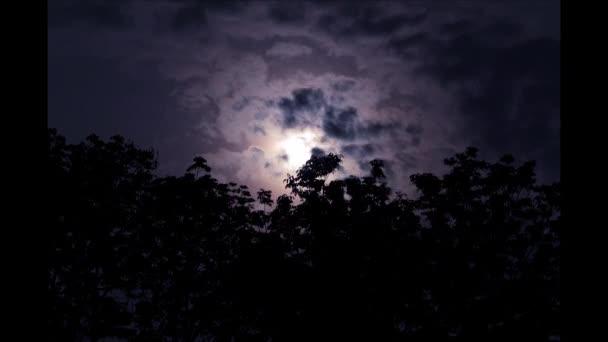 Fialový měsíc s padající hvězdy