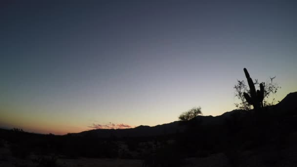 Vizuály poušti v Arizoně