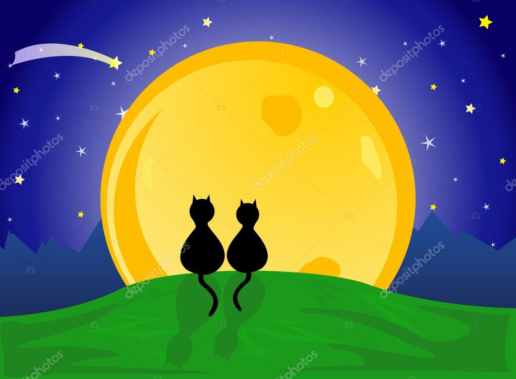 Cats looking to the moon