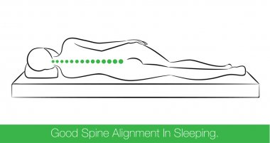 Good spine alignment in sleeping.