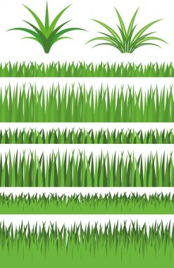 Illustration Vector Graphic Set Grass