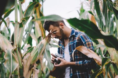 Young refugee with vintage camera in corn field
