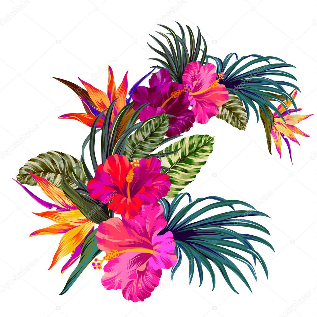 vector tropical bouquet — Stock Photo © rosapompelmo #110132520