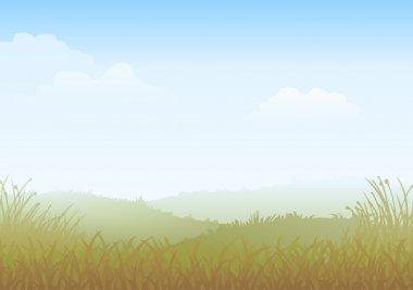 Misty Morning Meadow
