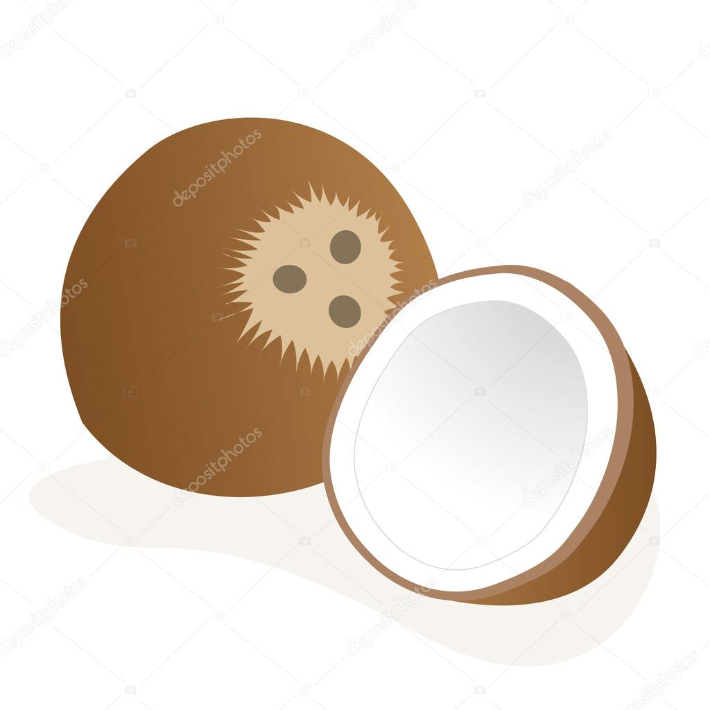 Illustration of an icon coconut fruit. Ideal for educational and institutional materials