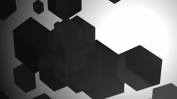 Black and White Hexagonal Animation